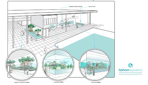 Conceptual drawing for aquariums at King Abdullah University of Science and Technology