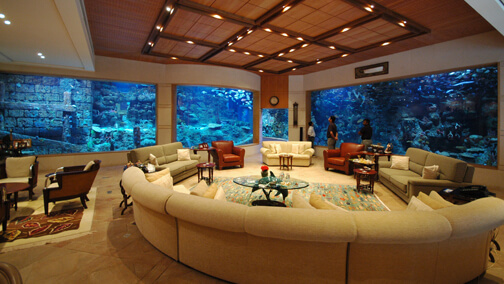 Private Palace Saltwater Aquarium