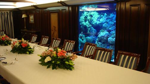 Private Yacht Live Coral Aquarium