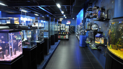 Our Retail Outlet in Jeddah, Saudi Arabia